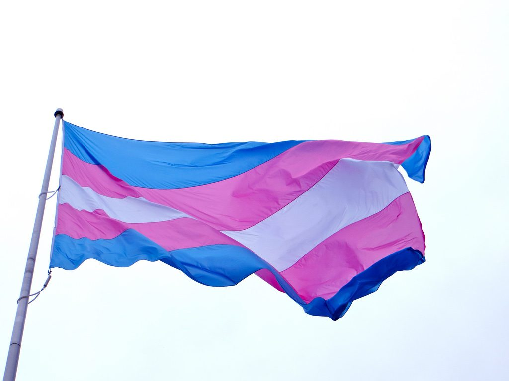 the trans flag blows in the wind