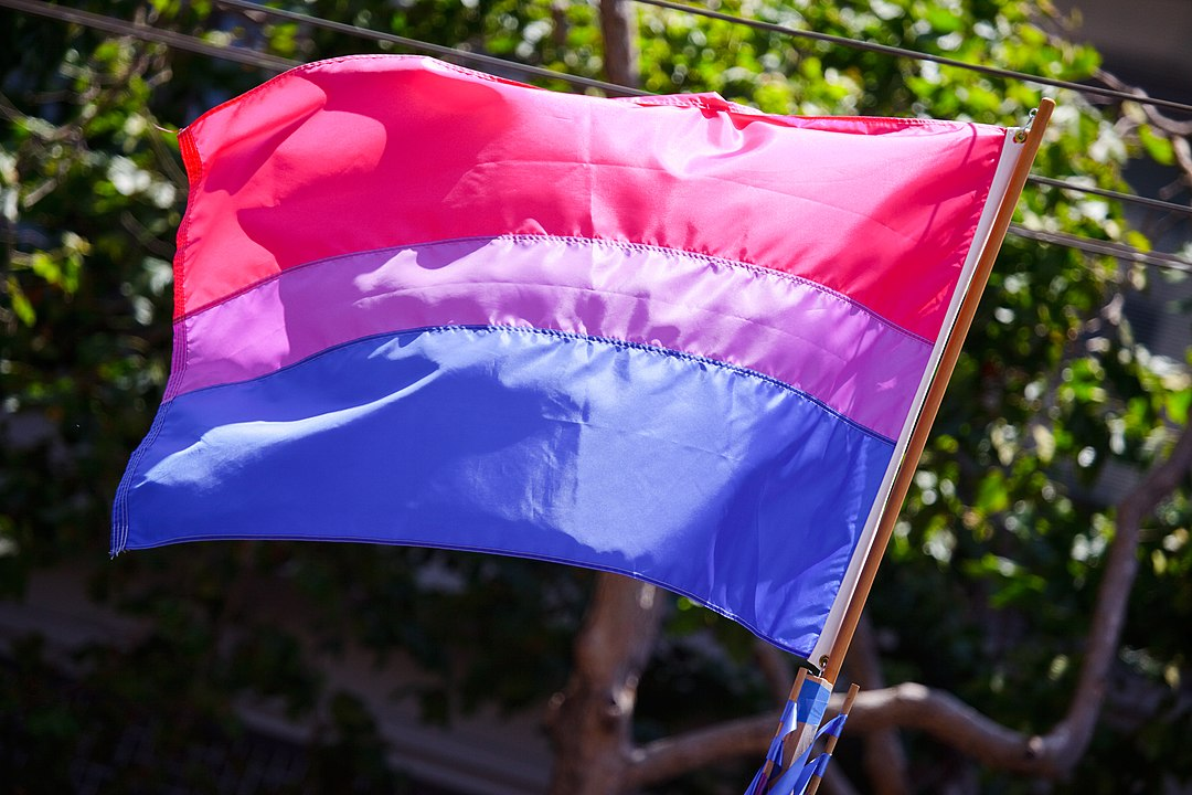 'At Manchester Pride this year, I was told I should make up my mind' – why Bi Pride matters | gal-dem