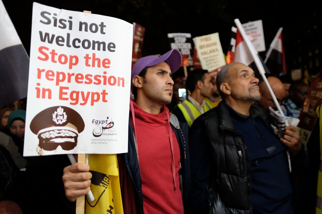 a person holds a placard at a protest in solidarity with Egypt