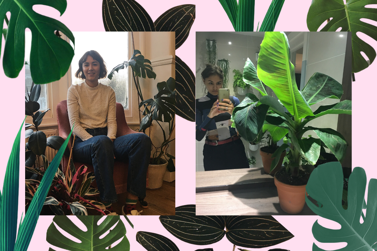 Putting down roots: why I started a gardening and plants club for women of colour | gal-dem